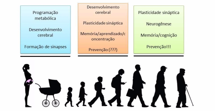 omega-3 nas fases da vida